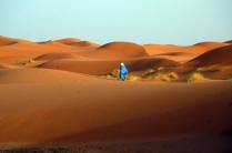 Un mar de dunas doradas (Marruecos)